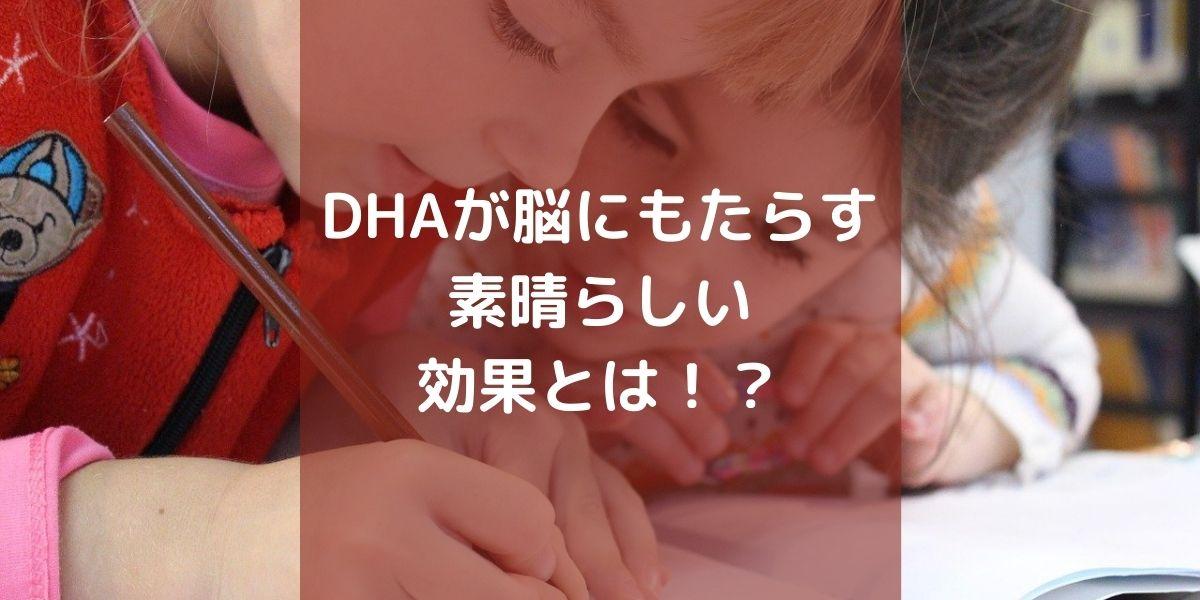 DHA脳効果